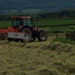 Cutting the meadow for silage on Upper Newton Farm